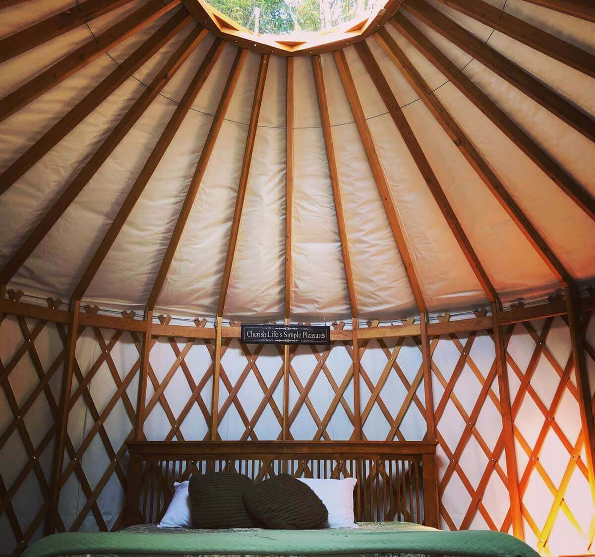Inside One of Our Casey Yurt Site