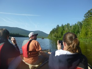 Canoe Moose Watching