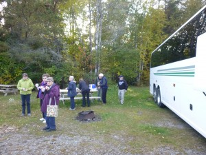 guided-bus-tour