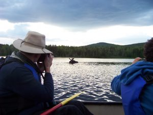 moose-canoe-tour