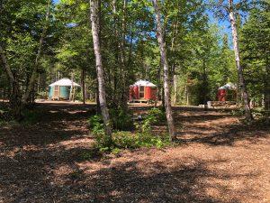 maine-yurt-camping